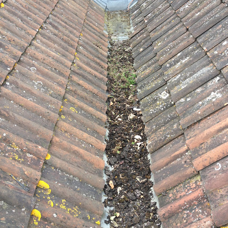 Before - gutter cleaning bath